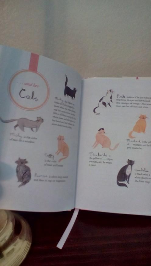 Wow!  Sixteen cats!