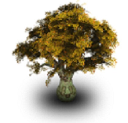 Sometimes, the family tree can appear to be mossy.  You have to dig in to find the Roots.