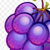 Disastrous Grape profile image
