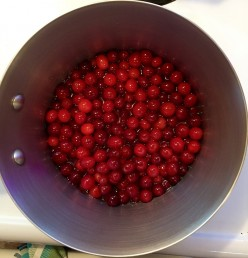 Cranberry Recipes, Fun Facts, and Benefits