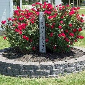 Rosebank Cemetery in Mulberry KS.