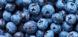 Blue Nutrition