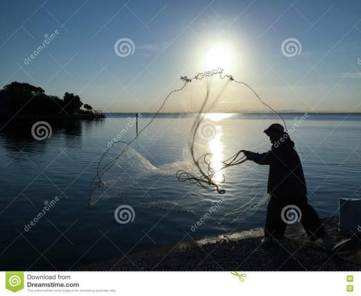 catching bait