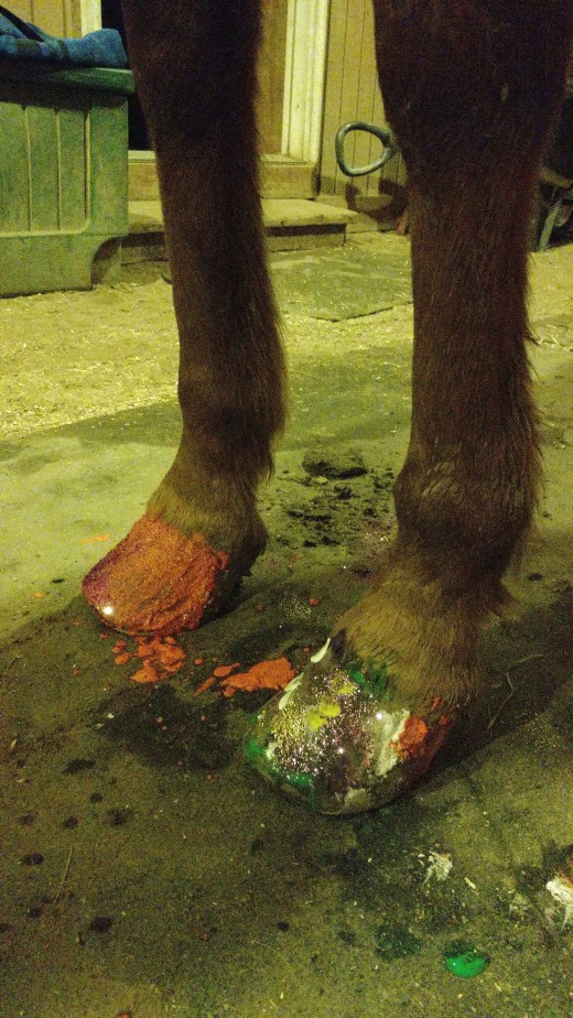 Pony Pedicures anyone ? Our pony Peanut stood like a champ to get his toes done !