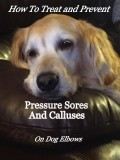 How to Treat and Prevent Pressure Sores and Calluses on Dog Elbows