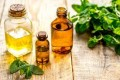 Benefits and Uses of Spearmint Essential Oil