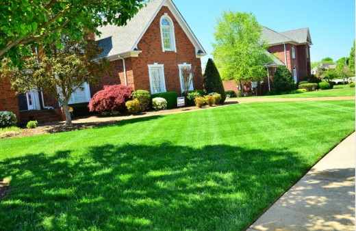 green lawn, lawn maintenance, perfect lawn, no weeds,