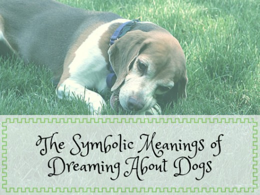 Learn the symbolic meanings behind dreams about dogs.