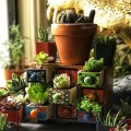 Top 10 Unique Succulent and Cactus Decorating Ideas For Your Home