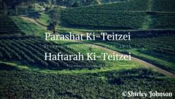 Parashat Ki Teitzei