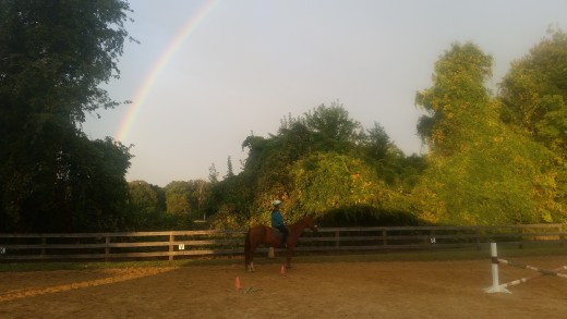 Just keep on working toward your goals! You will get there. Somewhere over the rainbow all our horsey dreams will come true!
