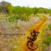 GeckosTrails profile image