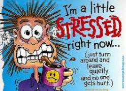 Stress at It's Worst and Best