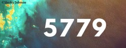 Rosh Hashanah 5779