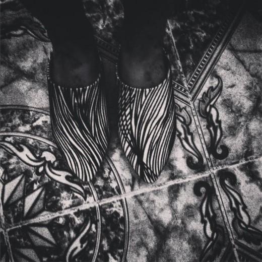 Zebra striped blgha.