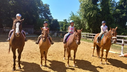 Marley on the right again in this photo. Doing what he does best,teaching kids to ride!