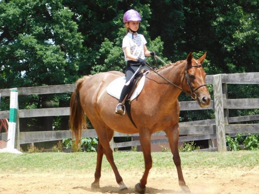 This is such a cute picture! Also, note her little rider carrying her crop, just in case.