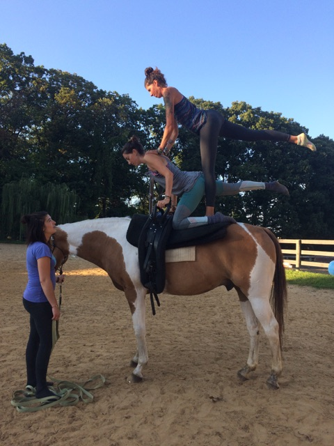 Not many horses would put up with vaulting on top of being in a beginner lesson program. Chaps is awesome.