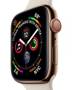 The Apple Watch, a Health Tool for Seniors