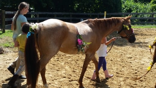 Another picture of the princess Lily undergoing summer camp torture!