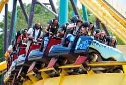 The Safety of Roller Coasters