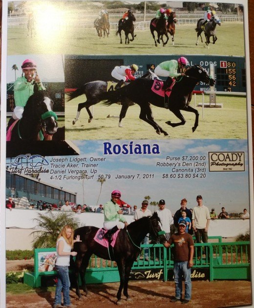 My mare, Rosiana, now Zoe. Back in her racing days.