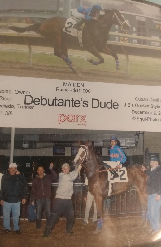 One of my heart horses,Danny, in his racing days.