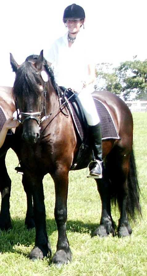 It requires feel and timing to get your horse to soften to the bit.