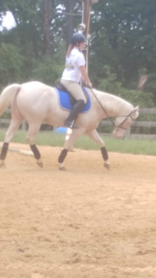 Feel and timing is what allows us to ride our horses in a collected frame without them leaning or pulling on us.