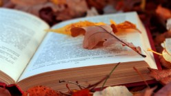 Top Books to Read For Halloween