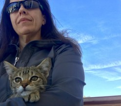 Hope for Feline Infectious Peritonitis (FIP) With EVO984 (GS-441524: Our Cat Luna's UCDavis Drug Trial Success Story