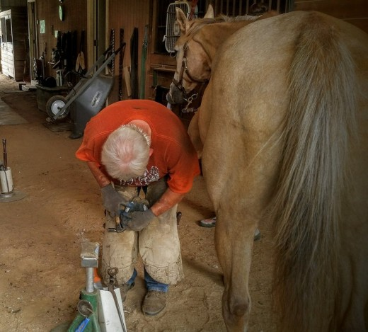 F is for Farrier. This is the best farrier we ever had, one of the people who influenced me the most with horses. May he rest in peace.