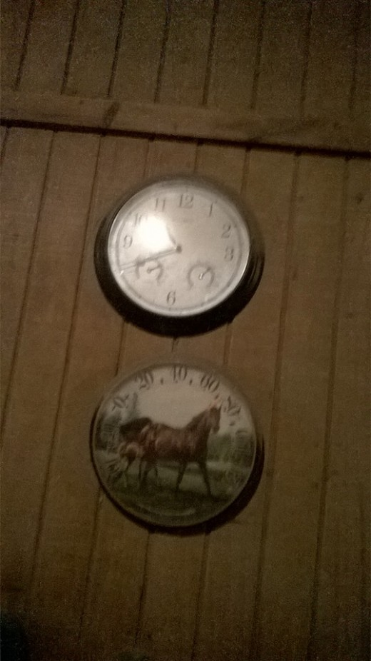 T is for time. With horses it seems like we never have enough of it.