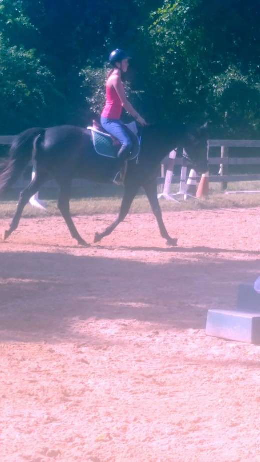 Straight line shoulder,hip,heel, as well as elbow, hand to horse's bit.