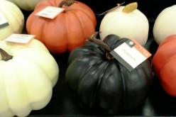 6 Stylishly Chic Halloween Pumpkin Ideas