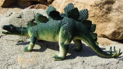 Stegosaurus: The Roofed Lizard
