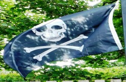 The Most Terrifying of Emblems - The Pirate Flag (Skull and Crossbones)