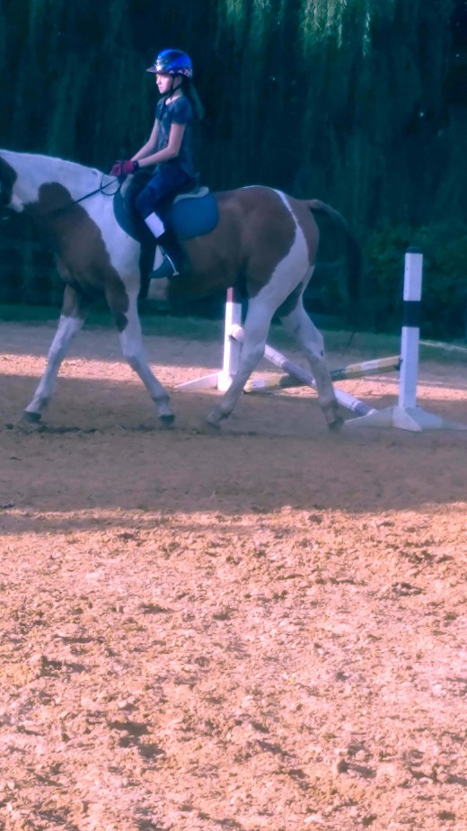 Working on your own strength can even consist of fun stuff, like the million dollar exercise where the rider works on strengthening their leg and holds a paper ( million dollar bill) between their leg and their horse.