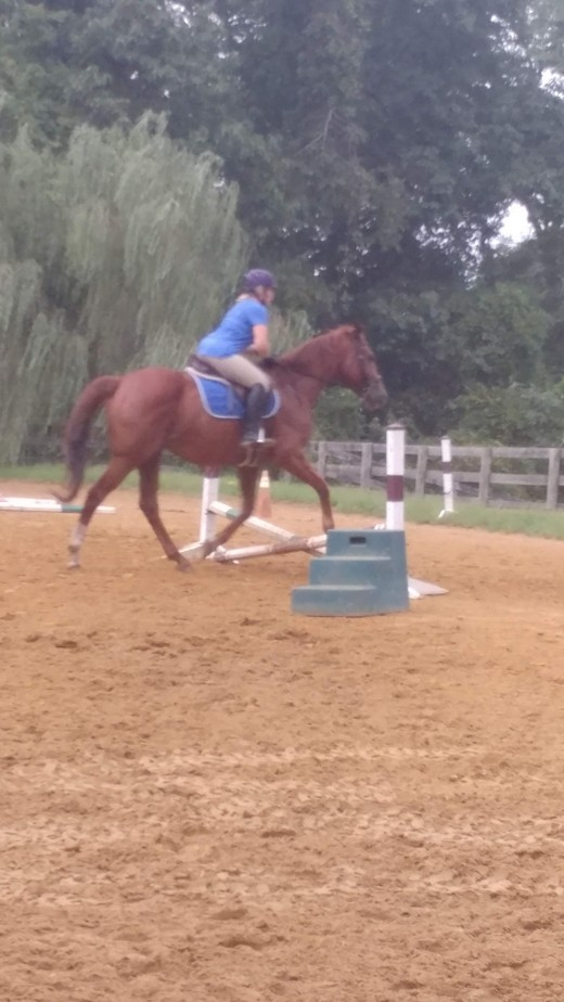 Practicing over low jumps is easier on your horses legs,feet and joints.