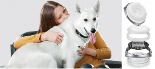 Mishiko PET Dog GPS Tracker