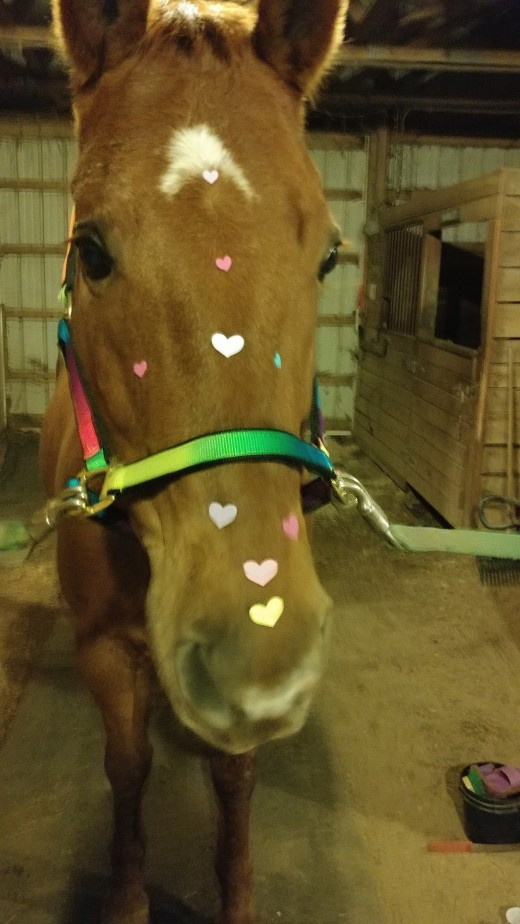 Valentine's Day fun at a February 14 unmounted lesson.