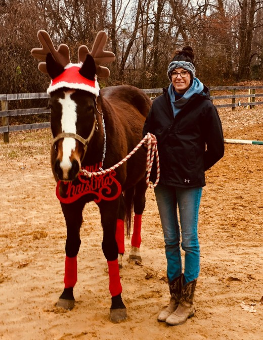 It really is fun to embarrass your horse in Christmas Decorations, this is my Finnigan, he didn't seem as ashamed as Kemerton did.