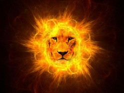 My Experience With the Lion of Judah. A One Hundred Percent True Story of a Near Death Experience
