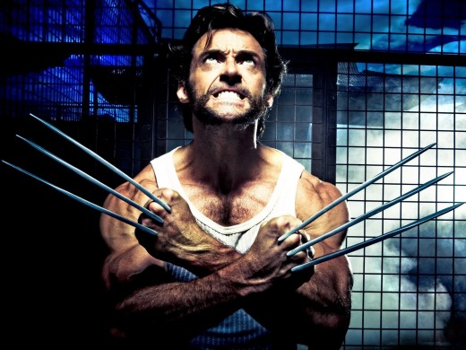 Jackman played the evergreen X-Men member Wolverine from 2000 to 2017.