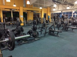 Finding the Perfect Gym