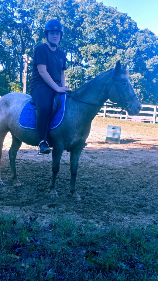My student was in for a big surprise going from her 15 something hand quarter horse to little miss Tammy.