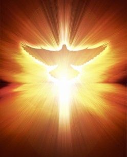 Daily Mass Reflections - 10/17