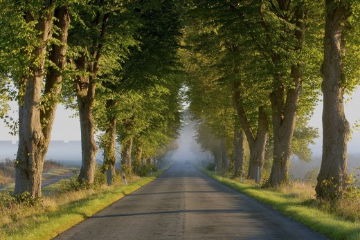 It can be simply wonderful driving in autumn!