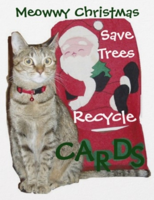 I recommend recycling cards by using them in arts and crafts projects, decorative gift bags and other holiday decor.
