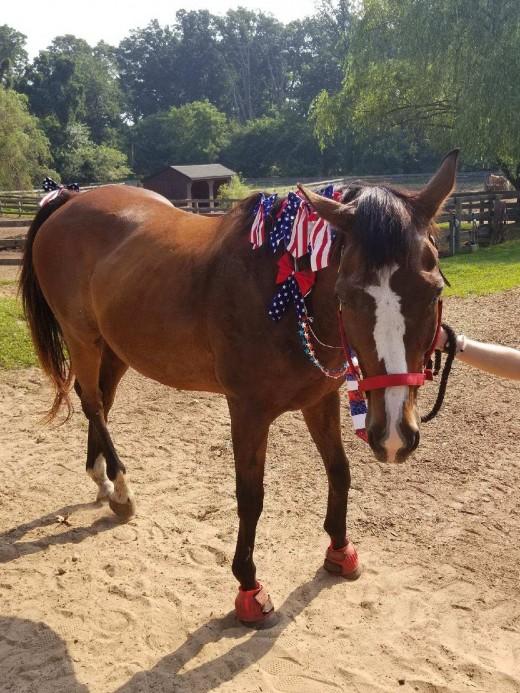 Finn in his patriotic costume!